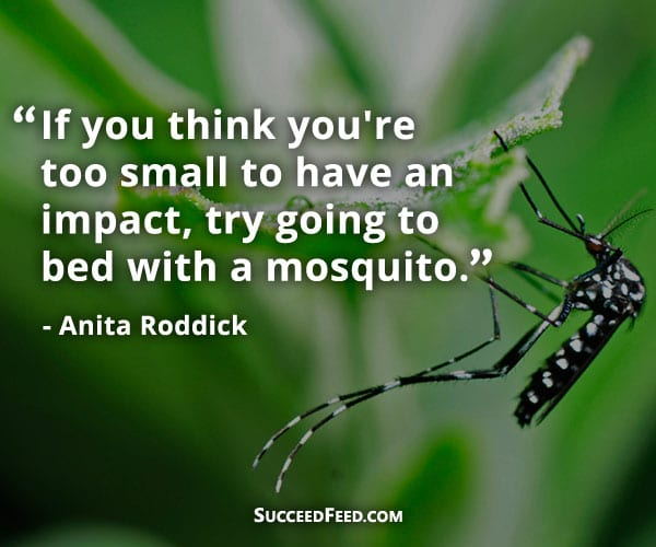 Anita Roddick Quotes: If you think you're too small to make an impact